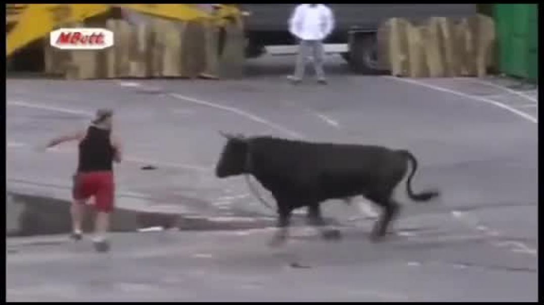 Man Chased By Bull Ran Into Water