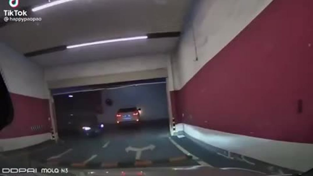 Reckless Driver In Parking Lot