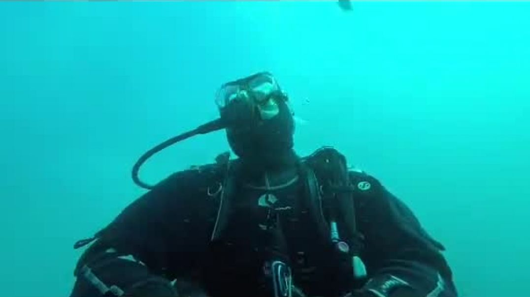 Seal Trying To Bite Diver's Head